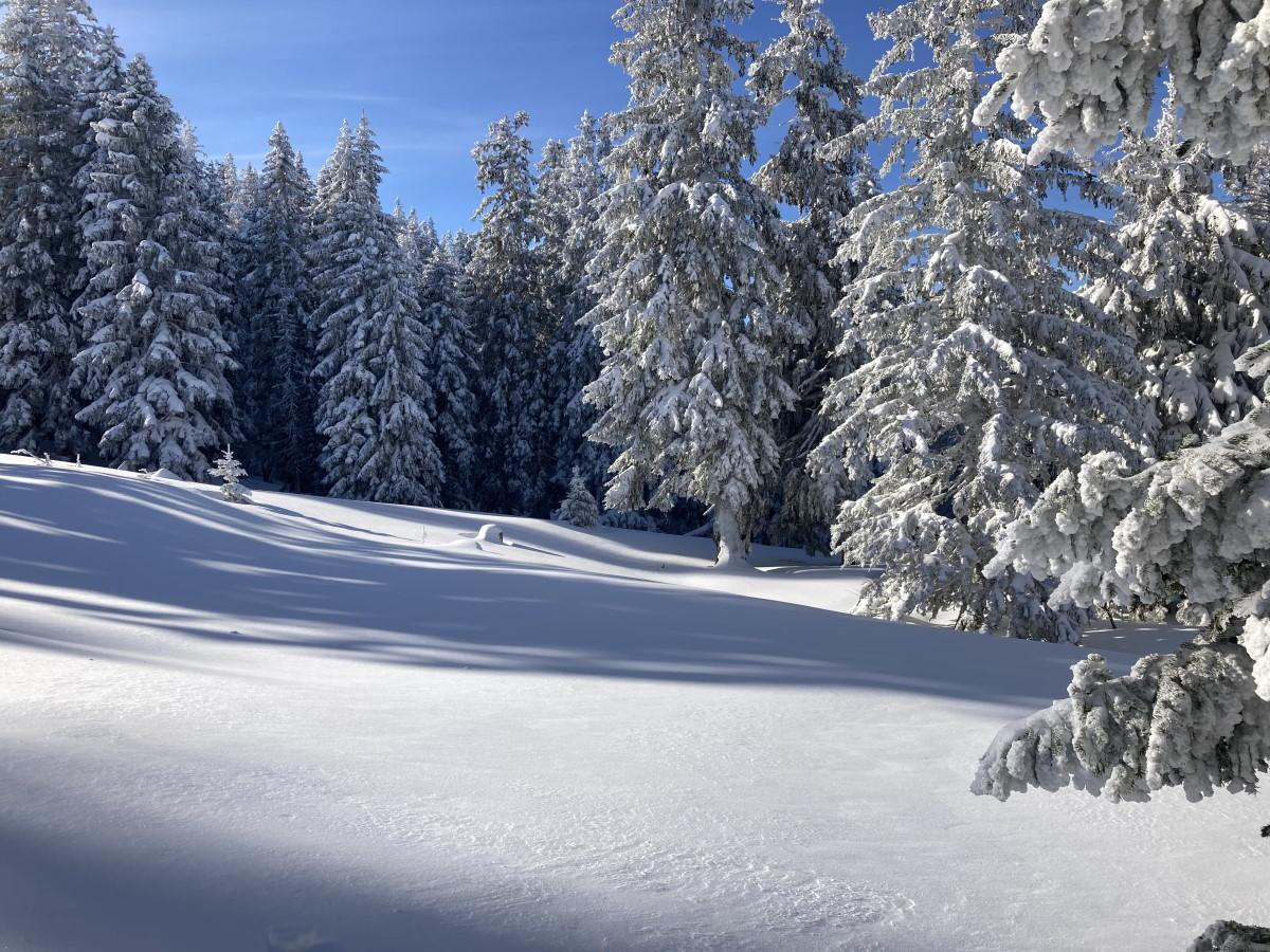 Skitourensaison 20/21_12